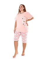 Комплект-двойка женский (бриджи + футболка) ASMA 10129 Батал