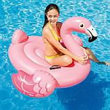 Дитячий надувний круг ФЛАМІНГО intex 99x89x71 см для плавання в басейні на море для пляжу 56251, фото 7