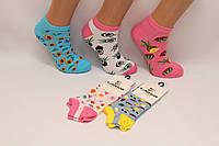 Женские носки короткие с хлопка Кардешлер 36-40  арбузики