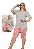 Пижама женская комплект-двойка (бриджи + футболка) ASMA 10182 Батал