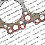 Прокладка ГБЦ МТЗ-1221/1523/2022/2122 Д-260, цельная металлизированная с герметиком, 263-1003020-02-03,Беларус, фото 2