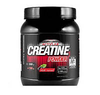 Креатин Activlab Creatine Powder (600 g)