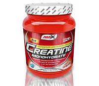 Креатин Amix Creatine Monohydrate (1 kg)