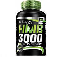 BioTech HMB 3000 (100 g)