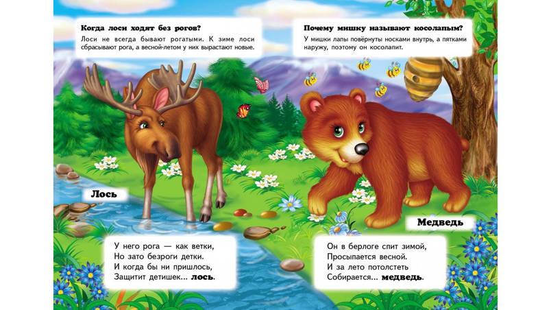 Пегас КА5 КК Хто це? В лісі (Рос), фото 2