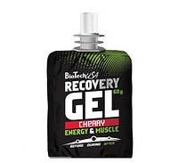 Восстановление BioTech Recovery Gel (60 g)
