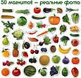 """Набір магнітів Magdum """"Фрукти і овочі"""" ML4031-15 EN, фото 3"""