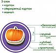 """Набір магнітів Magdum """"Фрукти і овочі"""" ML4031-15 EN, фото 4"""