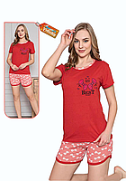 Пижама женская комплект-двойка (шорты + футболка) ASMA 11152