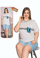 Пижама женская комплект-двойка (шорты + футболка) ASMA 11154 Батал