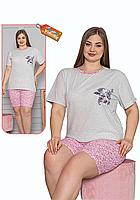 Пижама женская комплект-двойка (шорты + футболка) ASMA 11162 Батал серая