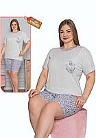 Пижама женская комплект-двойка (шорты + футболка) ASMA 11163 Батал серая