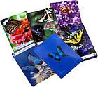 Карты Таро Оракул Бабочки для Перемен в жизни / Butterfly Oracle Cards for Life Changes, фото 3