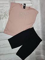 """Костюм літній жіночий, футболка+бриджі р-ри 50-56 (2цв) """"FIALKA"""" купити недорого від прямого постачальника"""