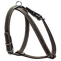 Шлея одинарна CoLLaR для дрібних порід собак (06341)