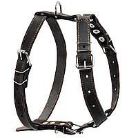 Шлея одинарна CoLLaR для середніх собак (06381)