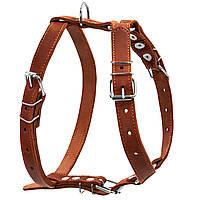 Шлея одинарна CoLLaR для середніх собак (06386)