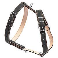 Шлея подвійна CoLLaR для середніх собак (06421)