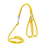 Шлея для собак шкіряна WAUDOG Glamour кругла, з повідцем для дрібних порід собак і кішок, Д 6 мм, XS, А 26-46
