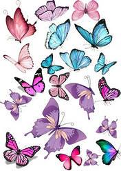 Вафельна картинка для кондитерских виробів, топерів, пряників, капкейків Метелики (листок А4) 23