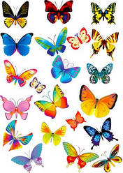 Вафельна картинка для кондитерских виробів, топерів, пряників, капкейків Метелики (листок А4) 26