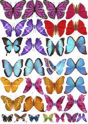 Вафельна картинка для кондитерских виробів, топерів, пряників, капкейків Метелики (листок А4) 28