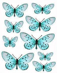 Вафельна картинка для кондитерских виробів, топерів, пряників, капкейків Метелики (листок А4) 31