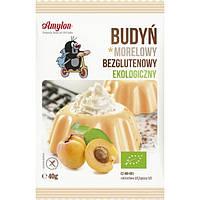 Bio Пудинг абрикосовий без глютену 40 г - Amylon