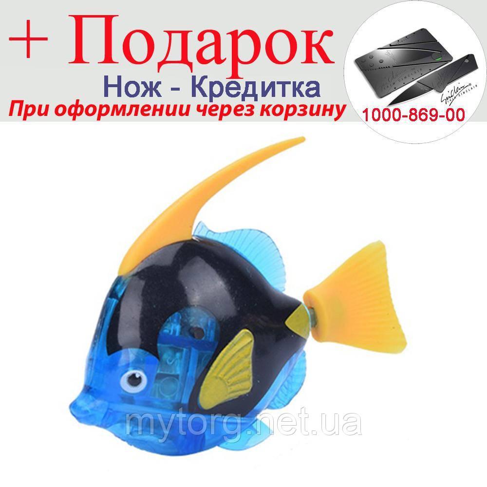 Рыбка Robofish на батарейках в аквариум Большая Синий