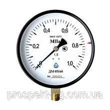 Манометр 100мм /кл 1,5/0-2,5 МПа/G1/2/радіальний