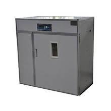 Професійний автоматичний інкубатор Tehno MS, MS-528