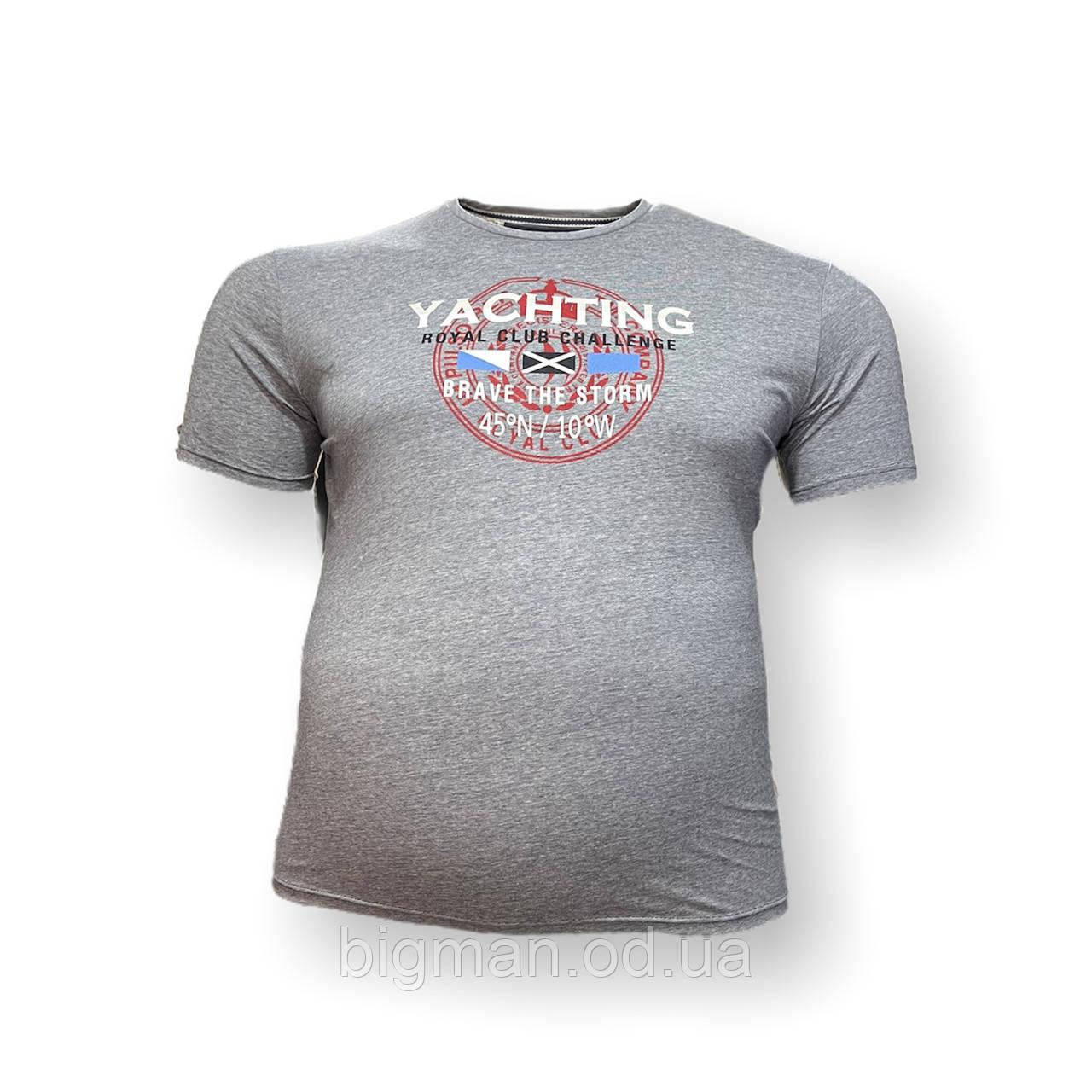 Чоловіча батальна футболка Monte Carlo 12095 3XL 4XL 5XL 6XL 7XL світло-сірий великі розміри Туреччина
