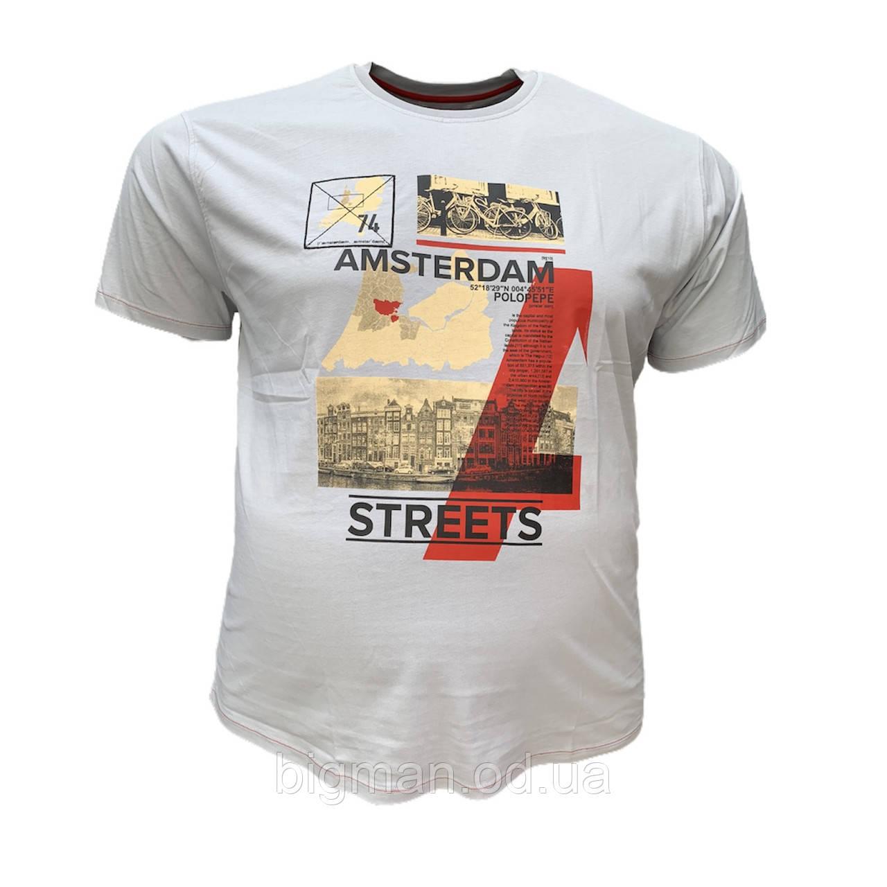 Мужская батальная футболка PoloPepe 12100 3XL 4XL 5XL 6XL светло-серая большие размеры Турция