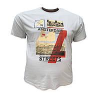 Чоловіча батальна футболка PoloPepe 12100 3XL 4XL 5XL 6XL світло-сіра великі розміри Туреччина, фото 1
