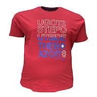 Чоловіча батальна футболка PoloPepe 12101 3XL 4XL 5XL 6XL бордо великі розміри Туреччина, фото 1
