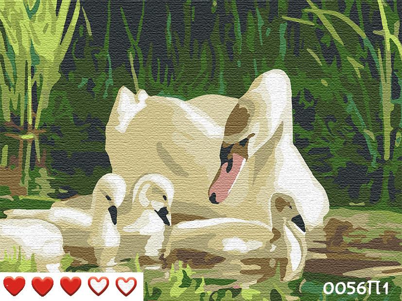 Картина по номерам Лебеди, цветной холст, 40*50 см, без коробки Barvi