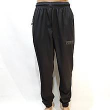 Летние мужские спортивные штаны Puma (Пума) реплика на манжете без подкладки Черные