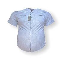 Чоловіча сорочка з коротким рукавом Jean Piere 16077 6XL 7XL 8XL блакитна великі розміри батал Туреччина, фото 1