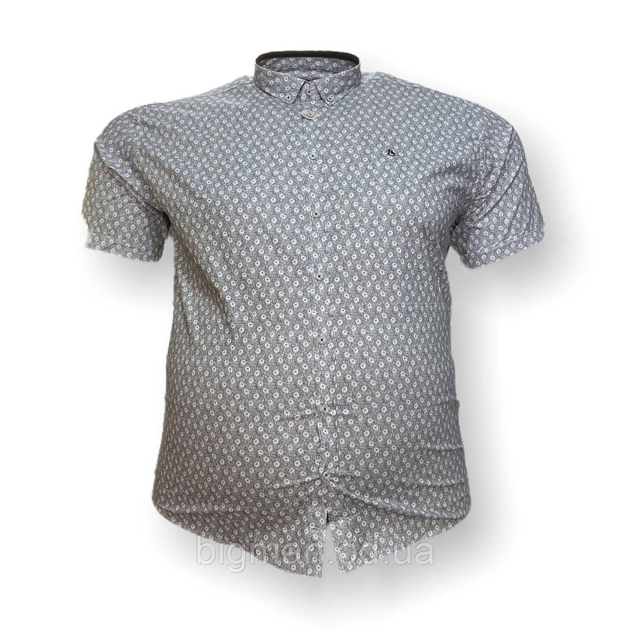 Чоловіча сорочка з коротким рукавом Barcotti 16081 2XL 3XL 4XL 5XL 6XL сіра великі розміри батал Туреччина