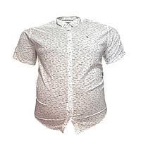 Мужская рубашка с коротким рукавом Barcotti 16082 2XL 3XL 4XL 5XL 6XL белая большие размеры батал Турция, фото 1
