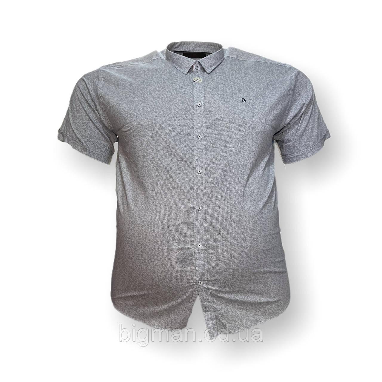 Чоловіча сорочка з коротким рукавом Barcotti 16083 2XL 3XL 4XL 5XL 6XL блакитна великі розміри батал Туреччина
