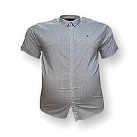 Чоловіча сорочка з коротким рукавом Barcotti 16083 2XL 3XL 4XL 5XL 6XL блакитна великі розміри батал Туреччина, фото 1