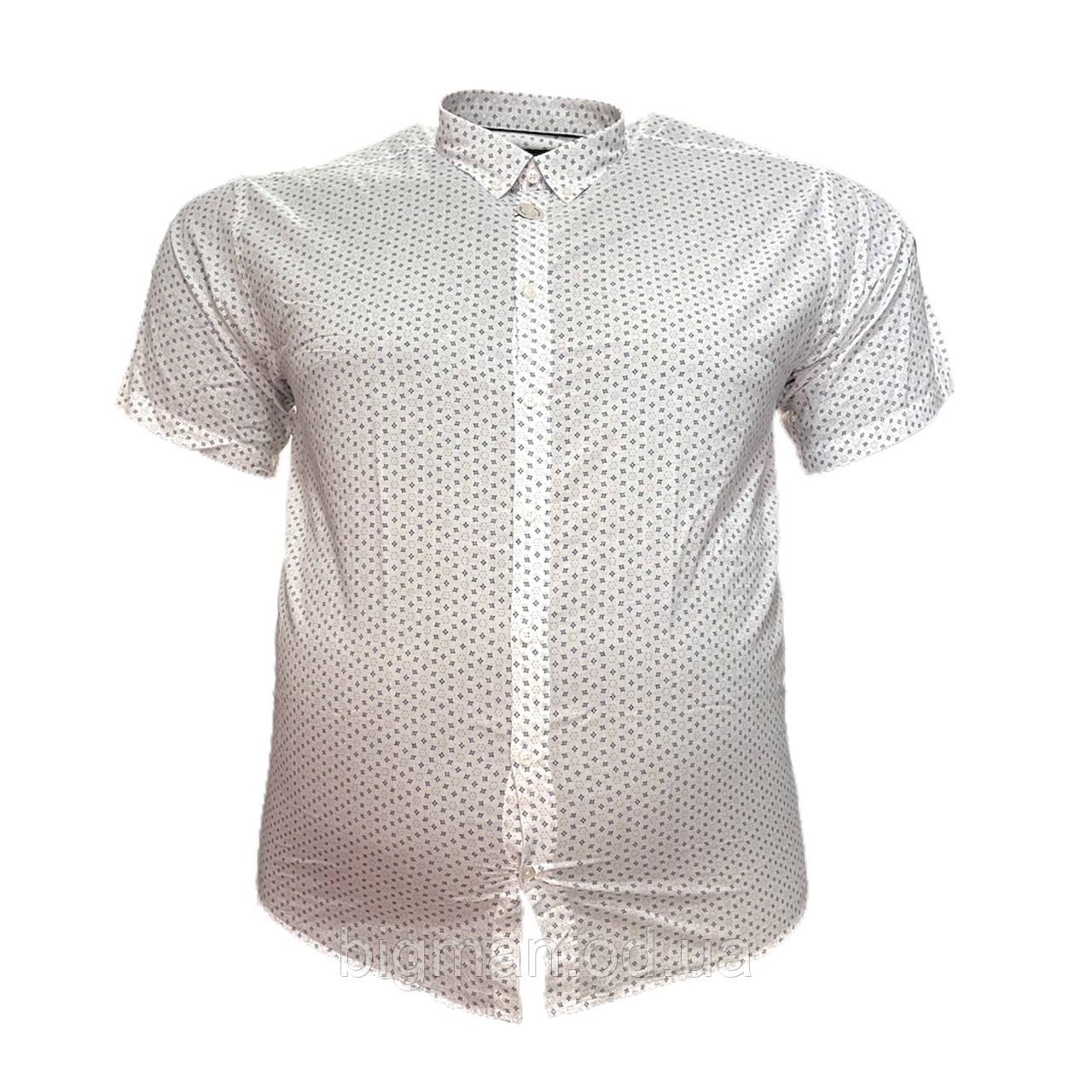 Чоловіча сорочка з коротким рукавом Barcotti 16086 2XL 3XL 4XL 5XL 6XL біла великі розміри батал Туреччина