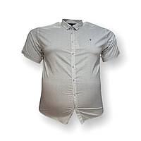Чоловіча сорочка з коротким рукавом Barcotti 16084 2XL 3XL 4XL 5XL 6XL сіра великі розміри батал Туреччина, фото 1