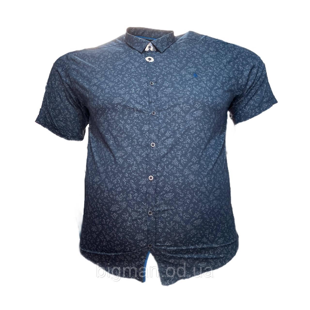 Чоловіча сорочка з коротким рукавом Barcotti 16085 2XL 3XL 4XL 5XL 6XL синя великі розміри батал Туреччина
