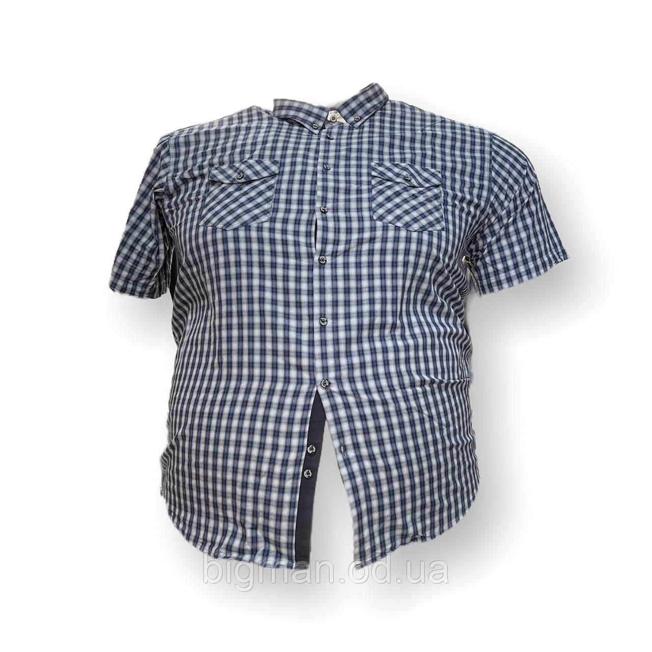 Чоловіча сорочка з коротким рукавом Birindelli 16087 3XL 4XL 5XL 6XL синя в клеткубольшие розміри батал Туреччина