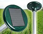 Отпугиватель кротов на солнечных батареях вибрационный Solar Rodent Repeller ОПТ, фото 9