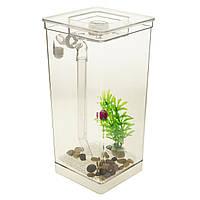 Маленький самоочисний акваріум з LED підсвічуванням My Fun Fish