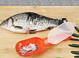 Кухонный нож щетка для чистки чешуи рыбы с контейнером Fissman, Рыбочистка с контейнером для чешуи ручная, фото 3