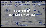 Сотовый поликарбонат 8 мм - Колибри Полигаль (Прозрачный), фото 3